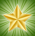 Big golden star vector