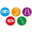 Five senses icon set - vector
