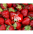 Blurred background with strawberry and eco label vector