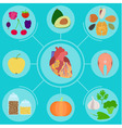Infographics of food for helpful for healthy heart vector