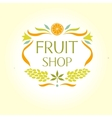Fruit shop vintage logo vector