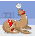 Seal - the water polo player vector