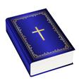 Holly bible vector