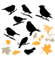 Birds and plants silhouettes vector