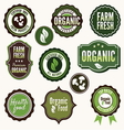 Set of organic and farm fresh food labels vector