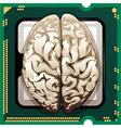 Brains inside vector
