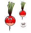 Fresh radish vegetable vector