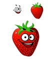 Colorful fresh ripe red strawberry vector