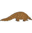 Pangolin animal cartoon vector