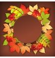 Autumn fall leaves vector