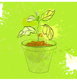 Sprout in a pot vector