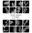 Set of flat floral icons vector