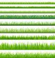Grass vector