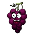 Branch of purple grape vector