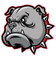 Bulldog head mascot vector