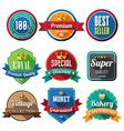Set of retro vintage badges and labels 05 flat des vector