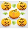 Set of orange halloween pumpkins and leaves vector