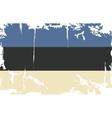 Estonian grunge flag vector