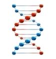 Deoxyribonucleic acid vector