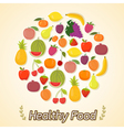 Circle from fruits healthy food vector