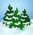 Pine trees covered with snow vector