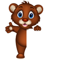 Cute baby brown bear cartoon posing with blank sig vector