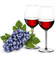 Two glasses of red wine with grapes vector