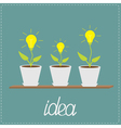 Lamp bulb plants in pots wooden shelf growing idea vector