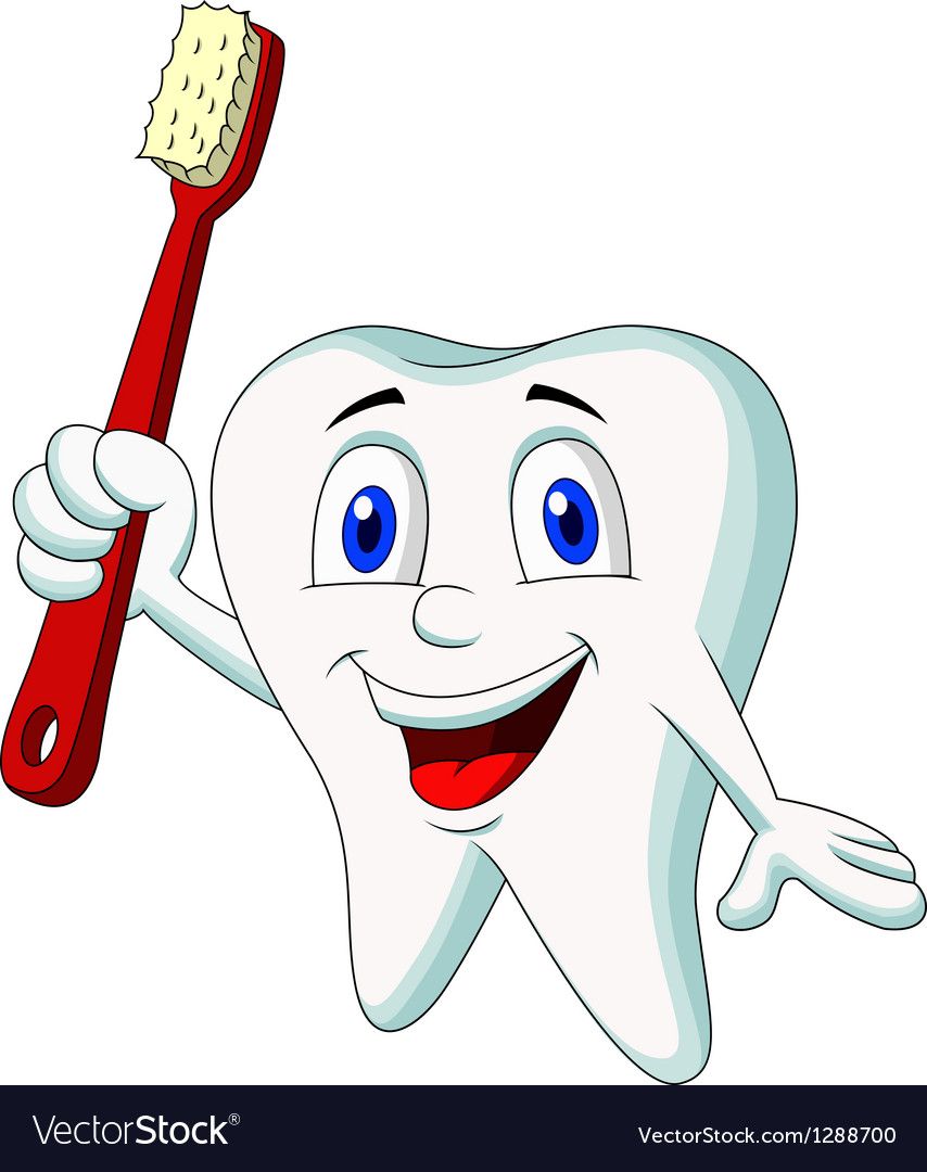 Cute tooth cartoon holding tooth brush vector | Price: 1 Credit (USD $1)