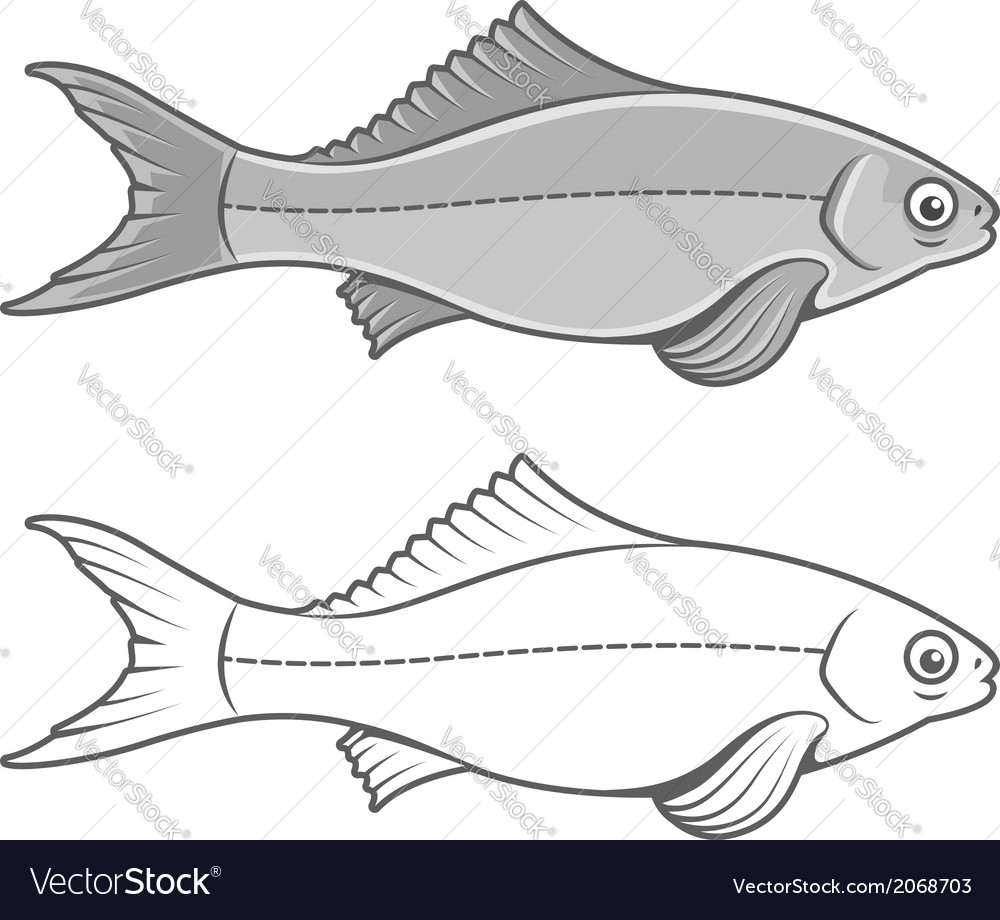 Silhouette of fish contour vector | Price: 1 Credit (USD $1)