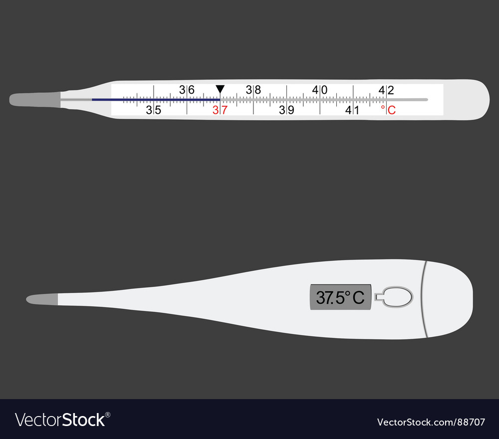 Clinical thermometers vector | Price: 1 Credit (USD $1)