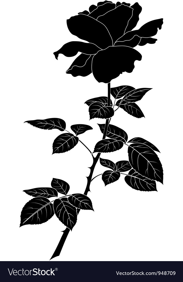 Flower rose silhouette vector | Price: 1 Credit (USD $1)