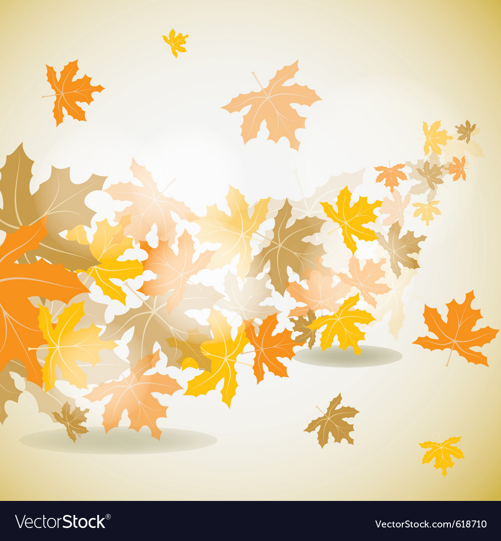 Maple autumn background vector | Price: 1 Credit (USD $1)