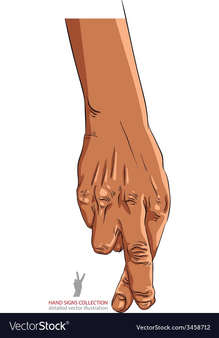 Cheater hand with crossed fingers detailed vector | Price: 1 Credit (USD $1)