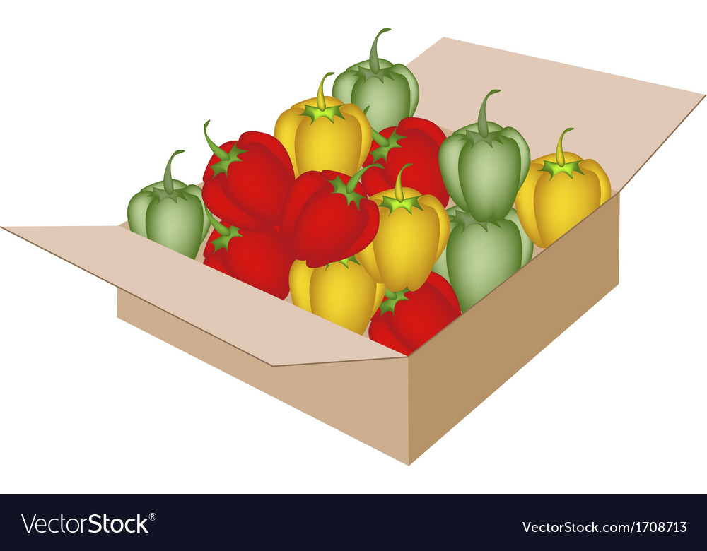 Fresh bell peppers in a shipping box vector | Price: 1 Credit (USD $1)