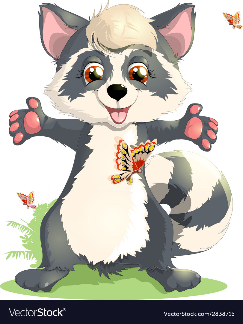Beautiful raccoon vector | Price: 3 Credit (USD $3)