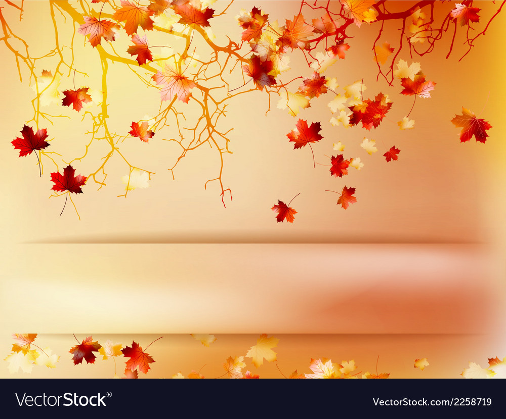 Autumn with leaves back to school eps 10 vector | Price: 1 Credit (USD $1)