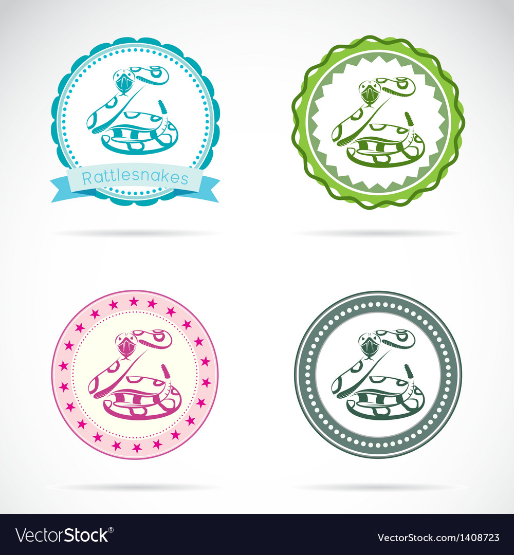 Rattlesnakes labels vector | Price: 3 Credit (USD $3)