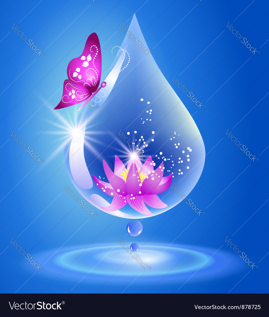 Drop and lily vector | Price: 1 Credit (USD $1)