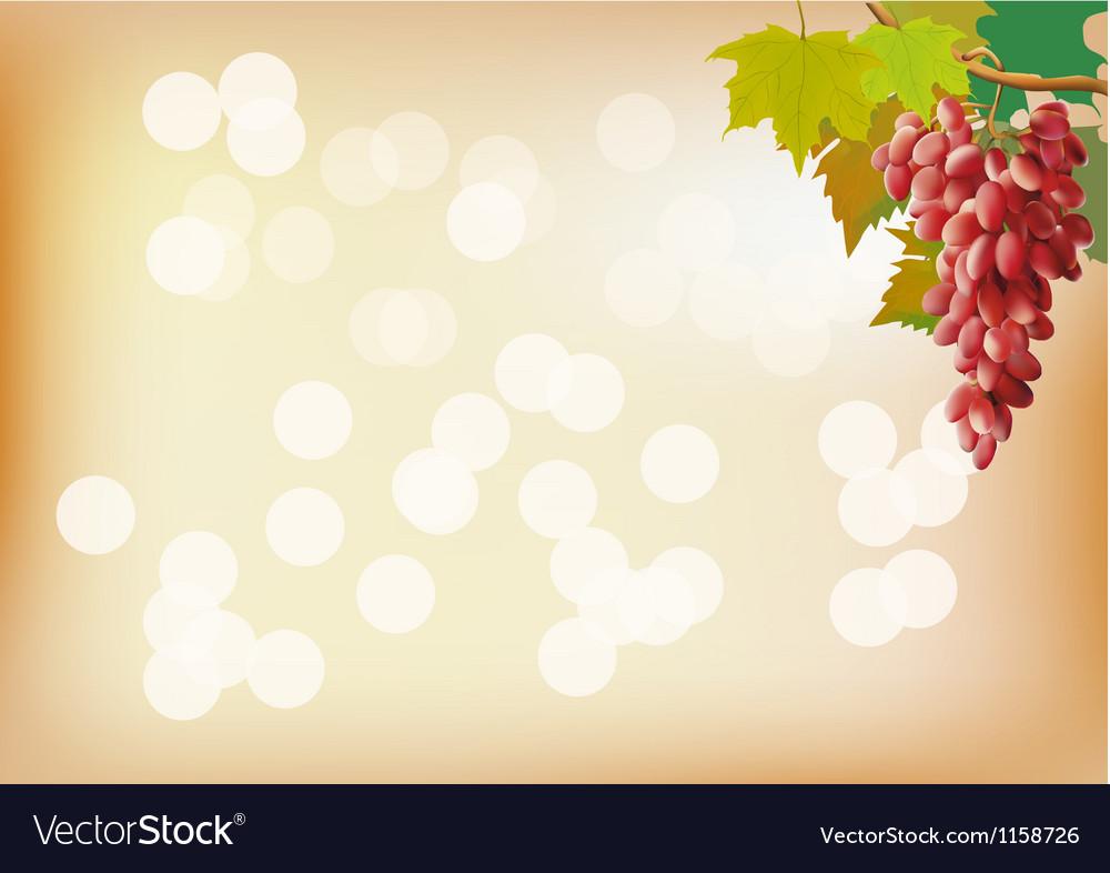 Autumn grapes postcard vector   Price: 1 Credit (USD $1)