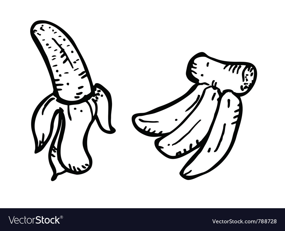 Banana doodle vector | Price: 1 Credit (USD $1)