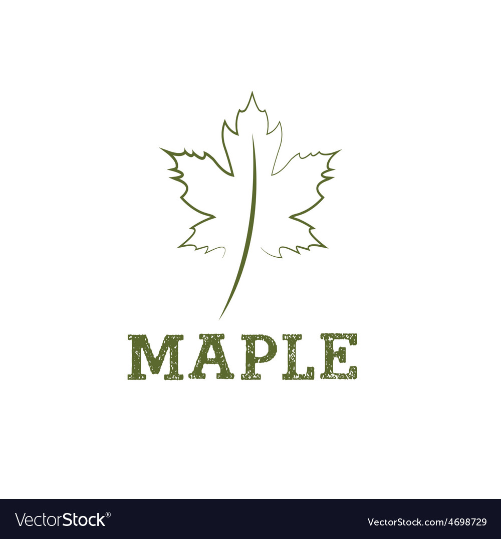 Maple leaf design template vector | Price: 1 Credit (USD $1)