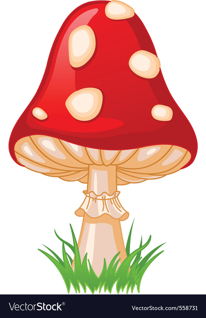 Of mushroom amanita in a grass vector | Price: 1 Credit (USD $1)