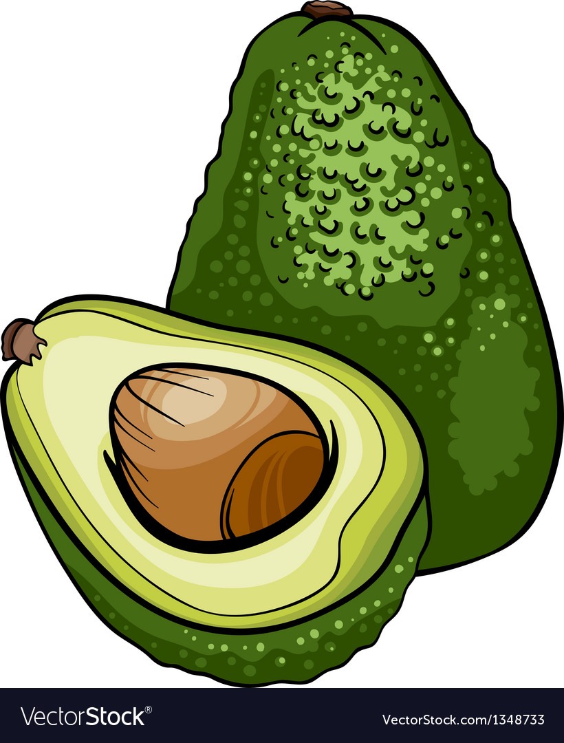 Avocado fruit cartoon vector | Price: 1 Credit (USD $1)
