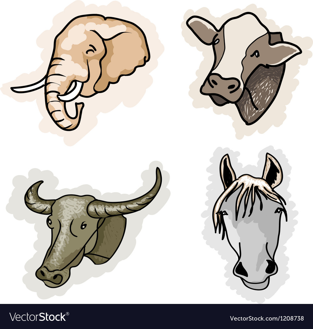 A set of benefit animal on corlors background vector | Price: 1 Credit (USD $1)
