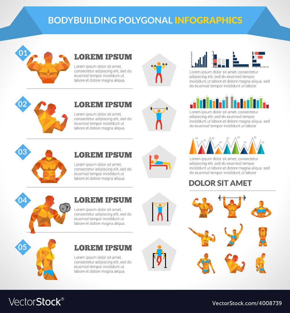 Bodybuilding polygonal infographics vector | Price: 1 Credit (USD $1)