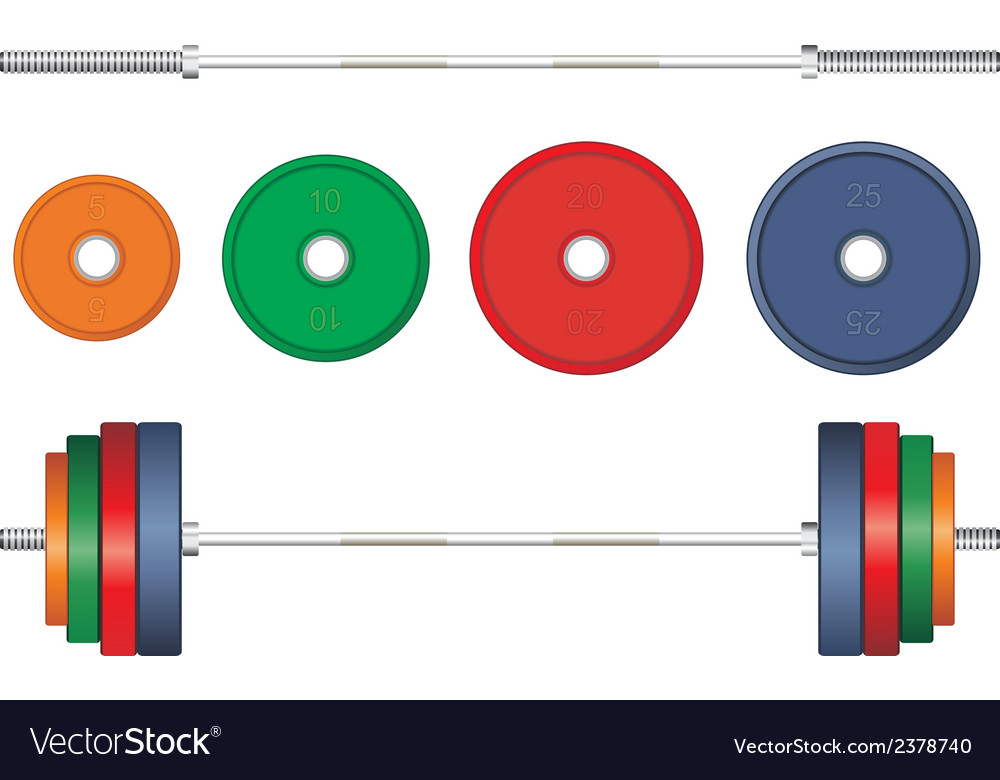 Multicolor barbell on white background vector | Price: 1 Credit (USD $1)