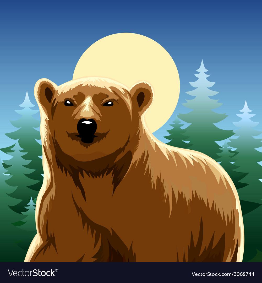 Brown bear vector   Price: 1 Credit (USD $1)