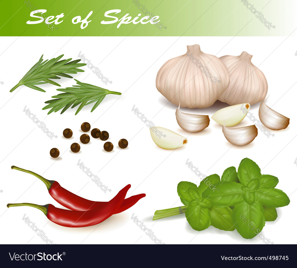Set with spice vector | Price: 3 Credit (USD $3)