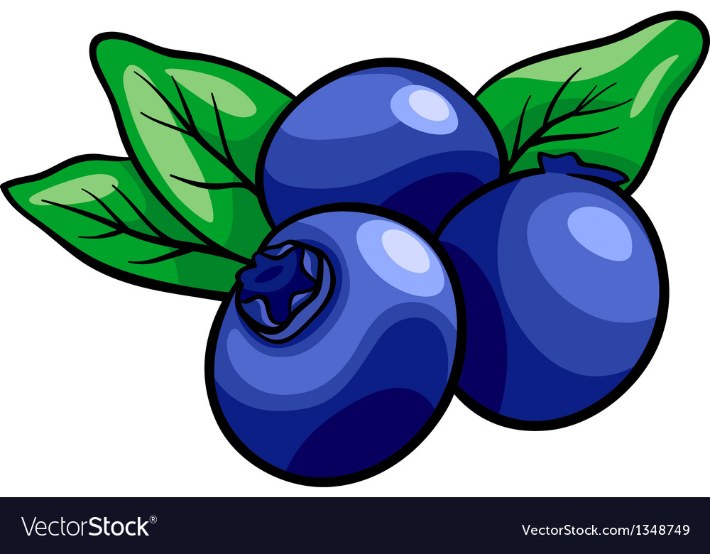 Blueberry fruits cartoon vector | Price: 1 Credit (USD $1)